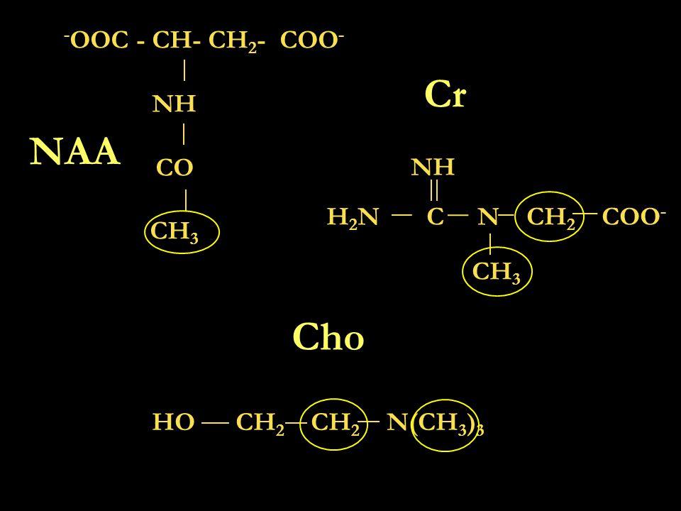 Cr NAA Cho -OOC - CH- CH2- COO- NH CO CH3 NH H2N C N CH2 COO- CH3