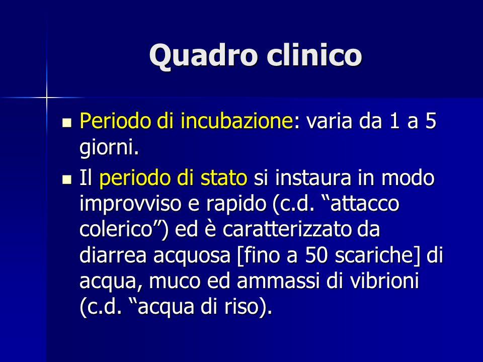Quadro clinico Periodo di incubazione: varia da 1 a 5 giorni.