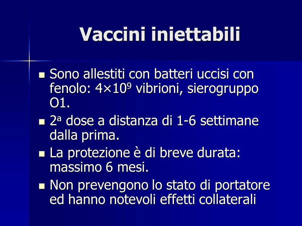 Vaccini iniettabili Sono allestiti con batteri uccisi con fenolo: 4×109 vibrioni, sierogruppo O1. 2a dose a distanza di 1-6 settimane dalla prima.
