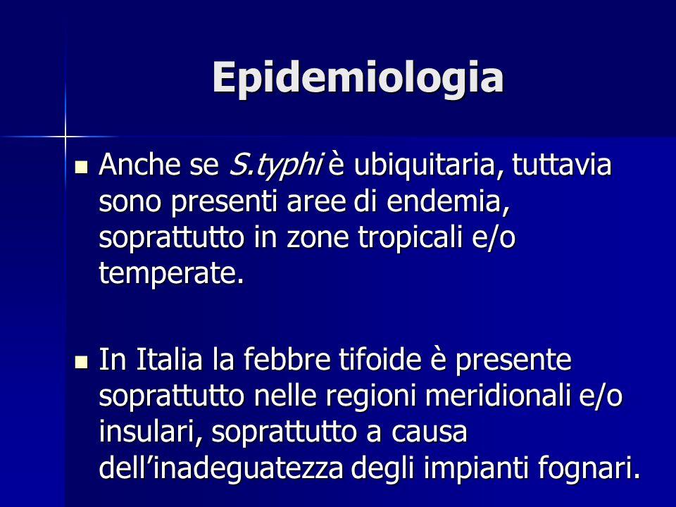 Epidemiologia Anche se S.typhi è ubiquitaria, tuttavia sono presenti aree di endemia, soprattutto in zone tropicali e/o temperate.