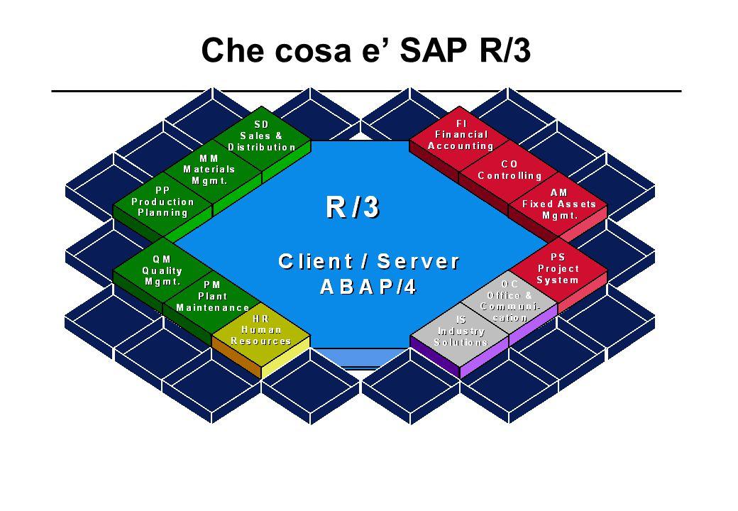 Che cosa e' SAP R/3