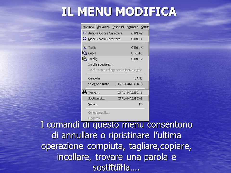 IL MENU MODIFICA