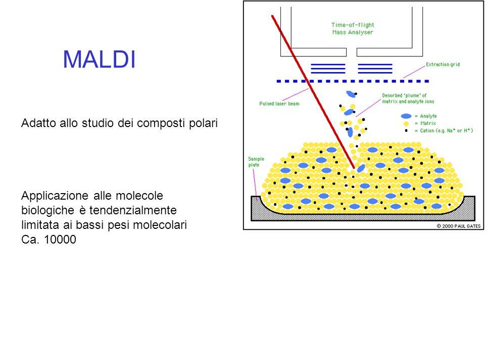 MALDI Adatto allo studio dei composti polari