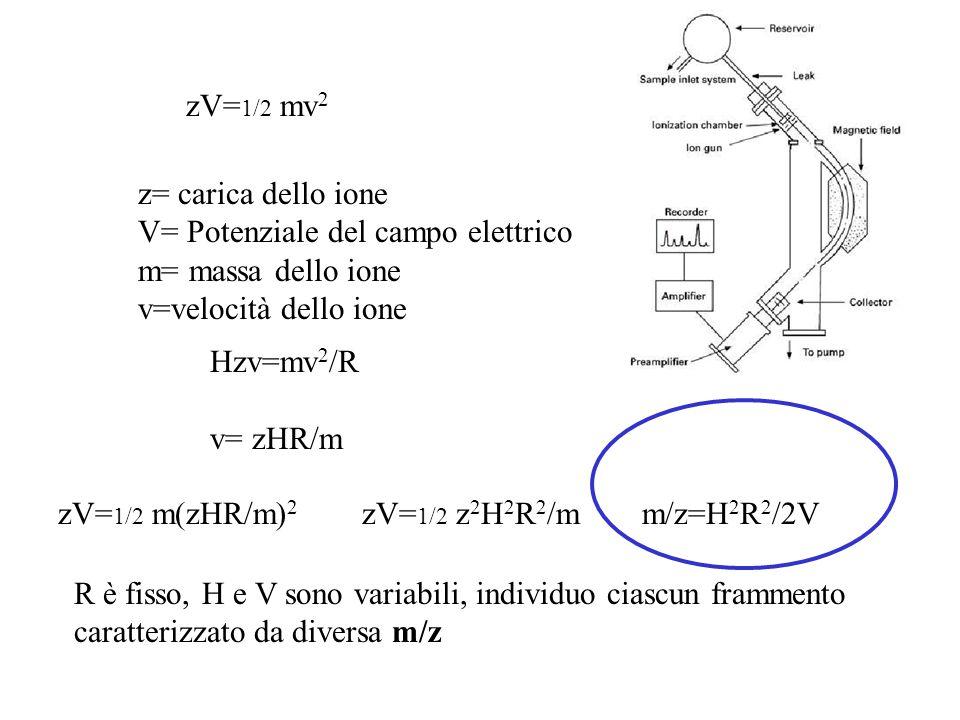 zV=1/2 mv2 z= carica dello ione. V= Potenziale del campo elettrico. m= massa dello ione. v=velocità dello ione.