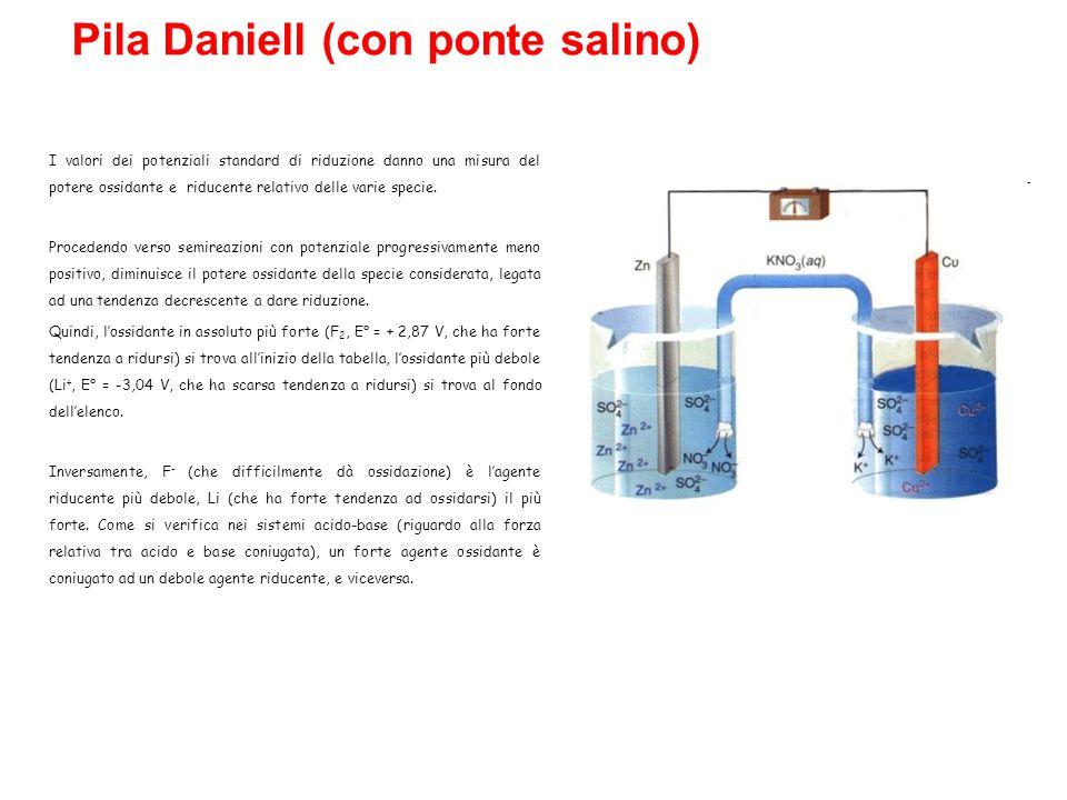 Pila Daniell (con ponte salino)