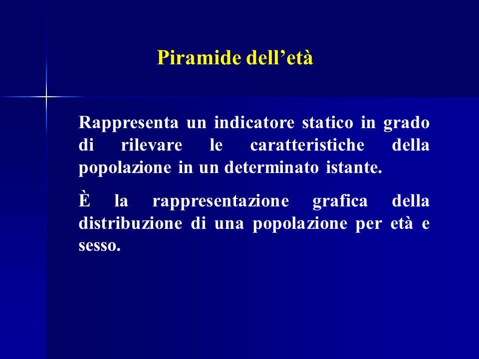 Piramide dell'età Rappresenta un indicatore statico in grado di rilevare le caratteristiche della popolazione in un determinato istante.