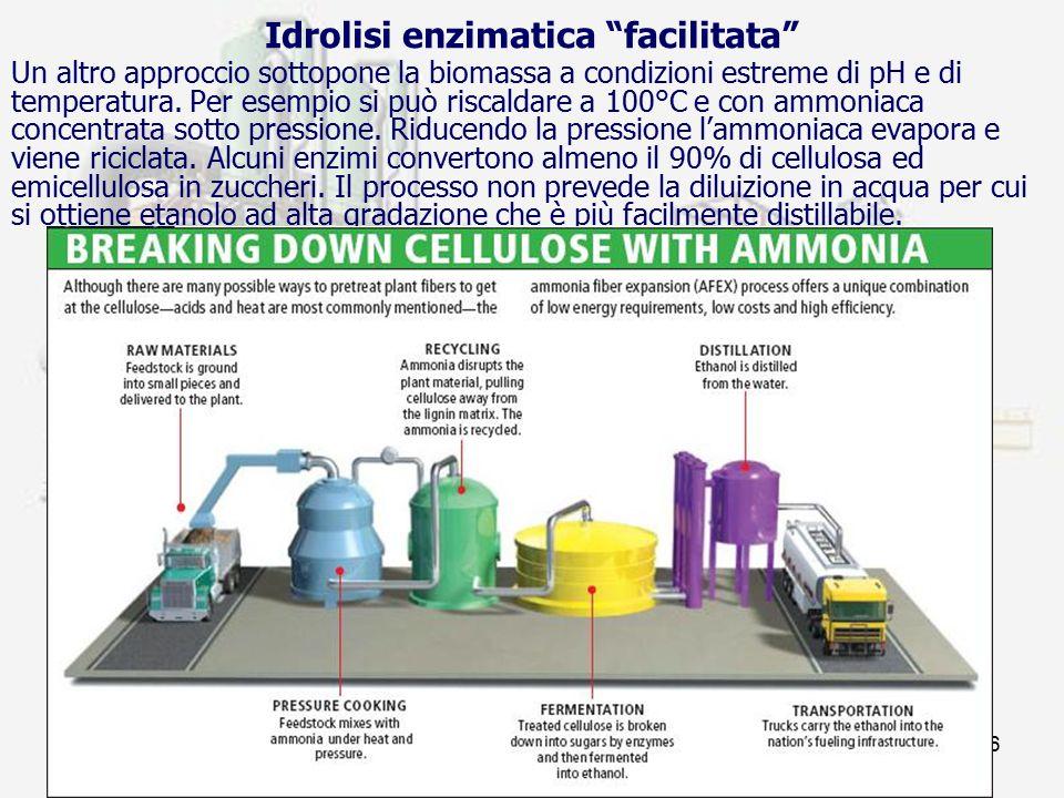 Idrolisi enzimatica facilitata