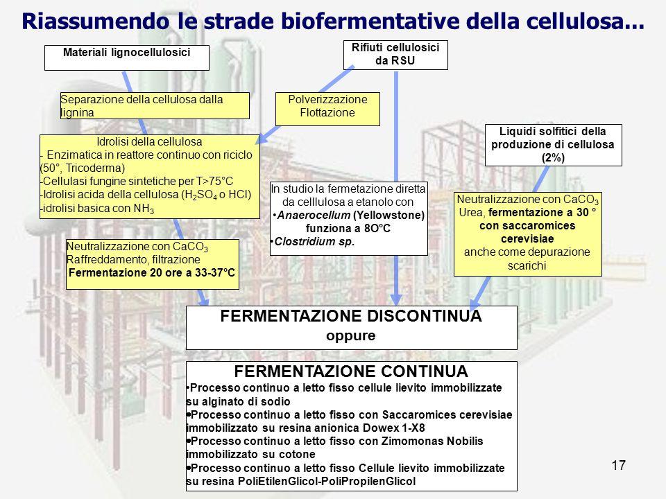 Riassumendo le strade biofermentative della cellulosa...
