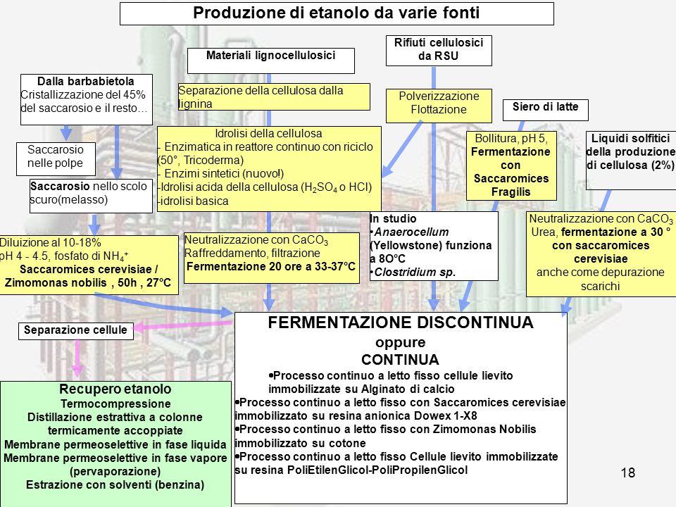 Produzione di etanolo da varie fonti FERMENTAZIONE DISCONTINUA