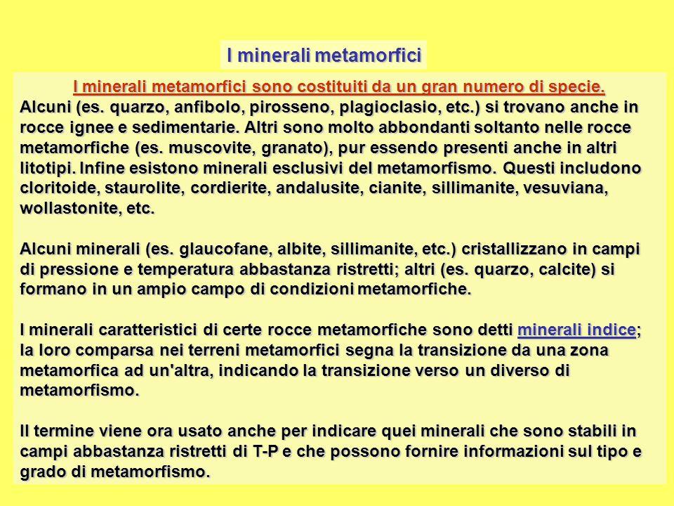 I minerali metamorfici sono costituiti da un gran numero di specie.