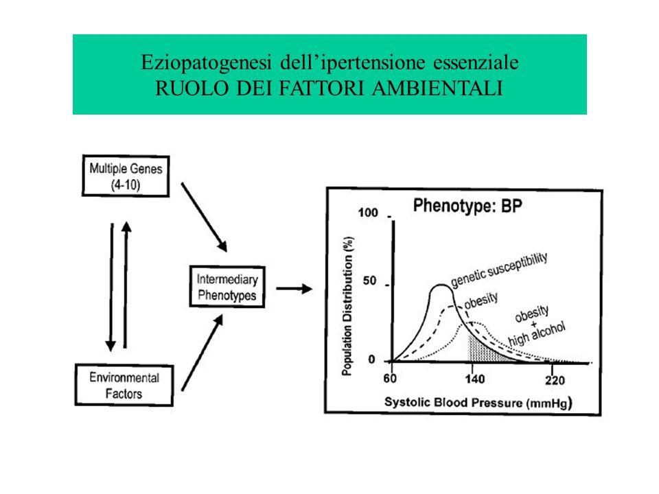 Eziopatogenesi dell'ipertensione essenziale