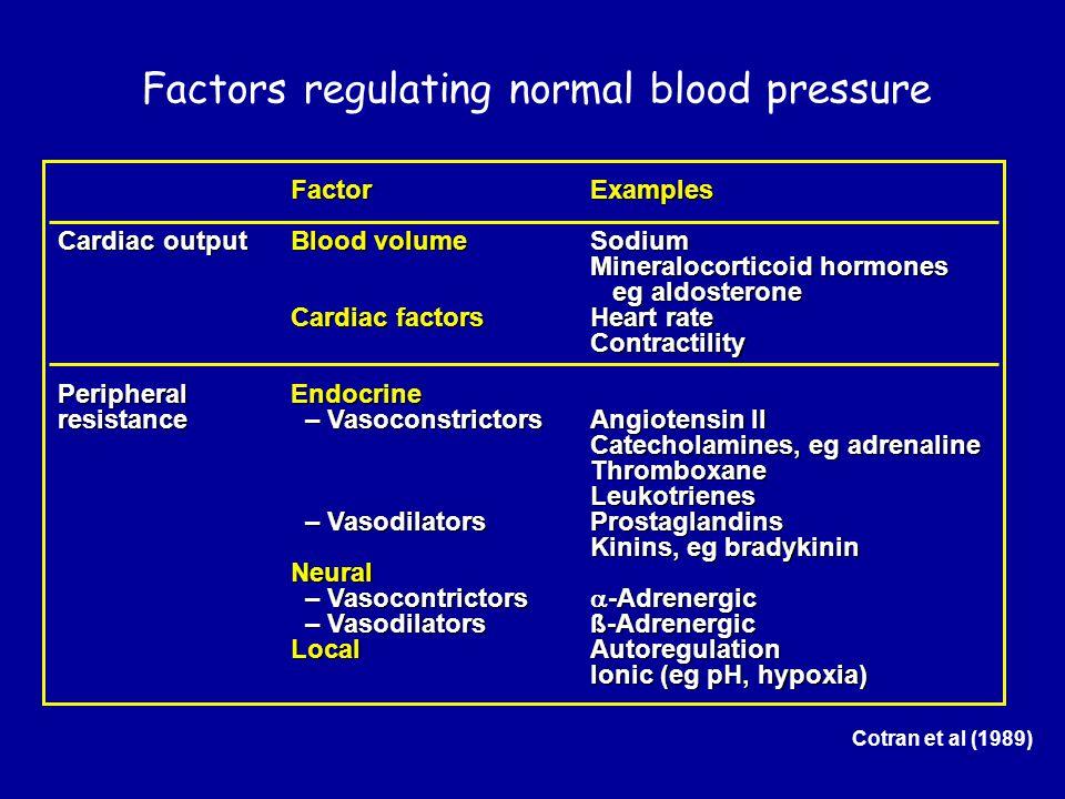 Factors regulating normal blood pressure