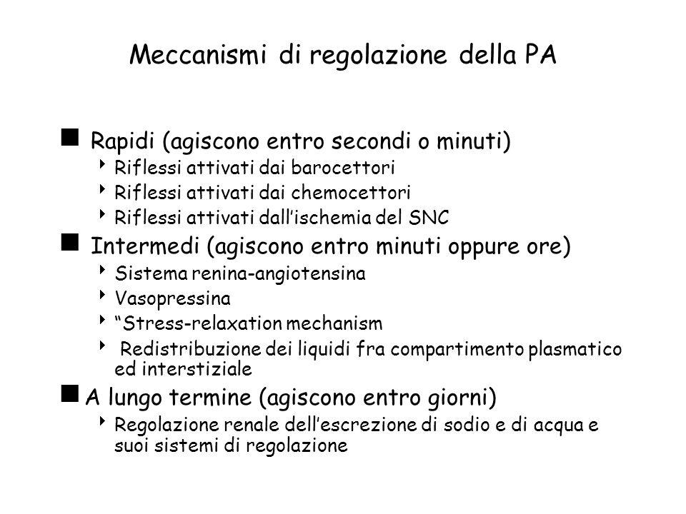 Meccanismi di regolazione della PA