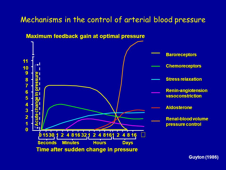 Mechanisms in the control of arterial blood pressure