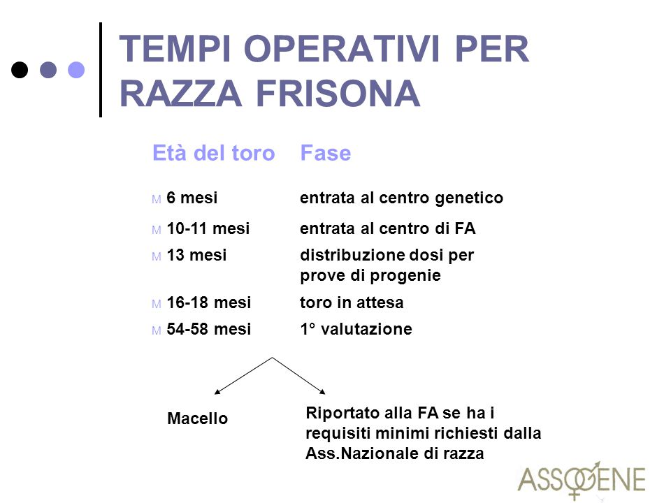 TEMPI OPERATIVI PER RAZZA FRISONA