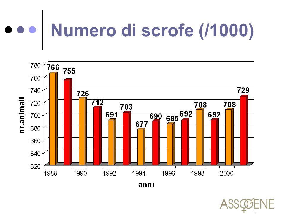 Numero di scrofe (/1000)