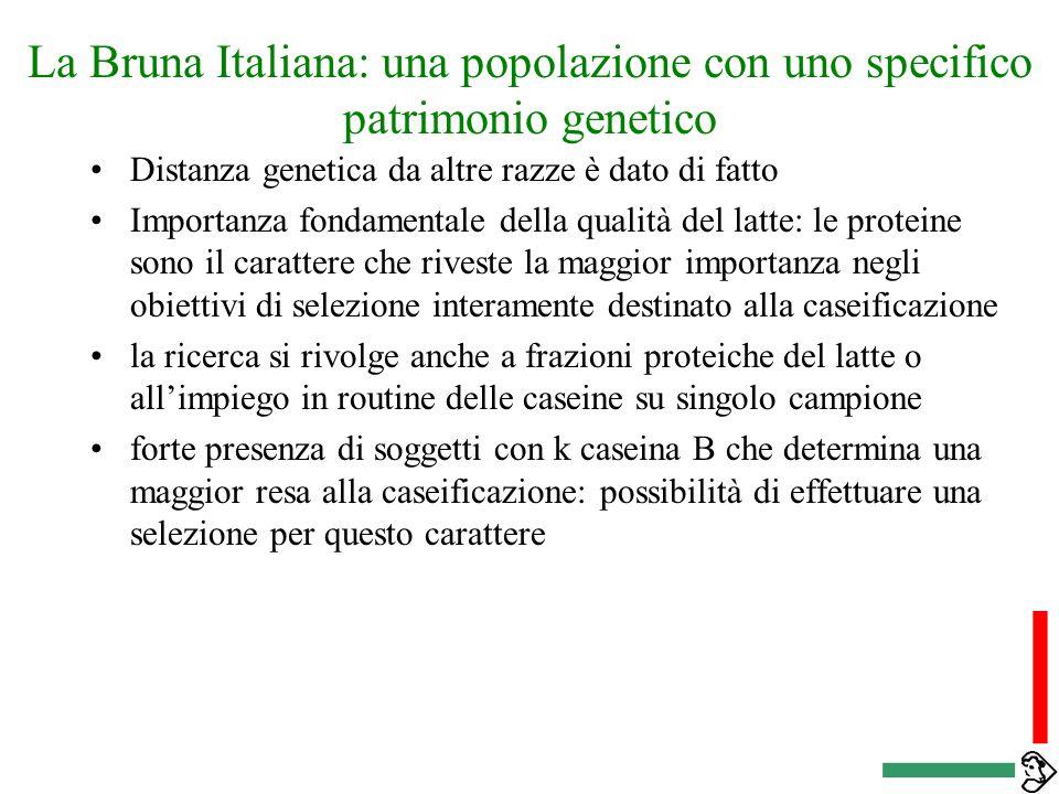 La Bruna Italiana: una popolazione con uno specifico patrimonio genetico