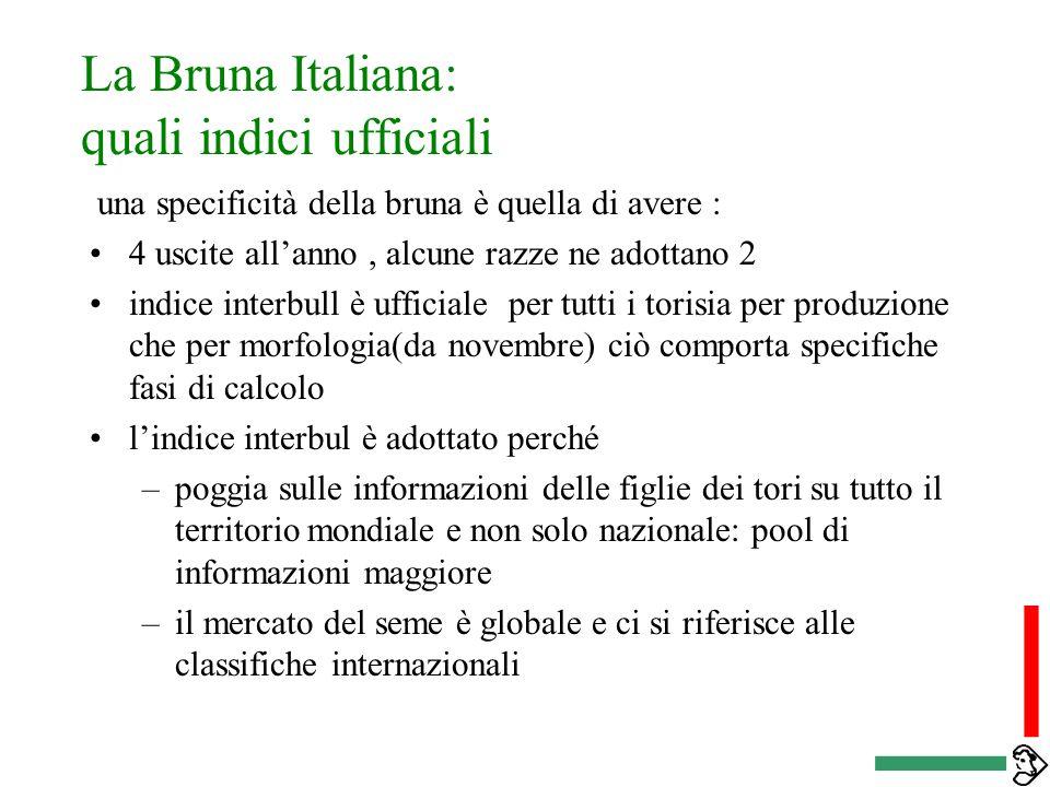La Bruna Italiana: quali indici ufficiali