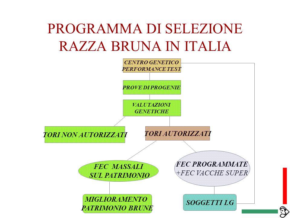 PROGRAMMA DI SELEZIONE RAZZA BRUNA IN ITALIA