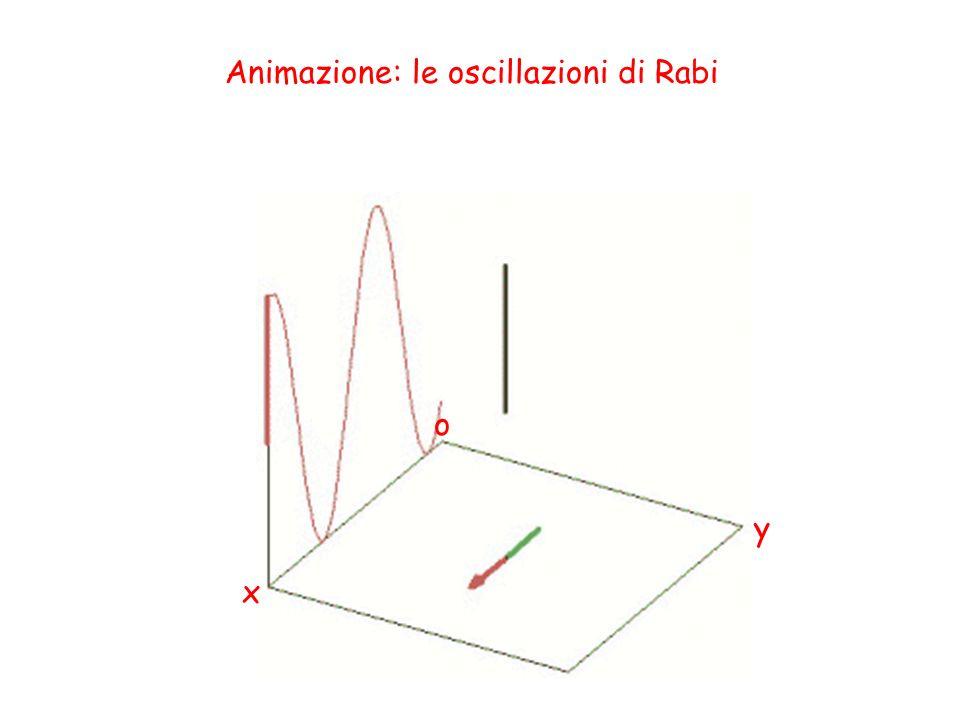 Animazione: le oscillazioni di Rabi