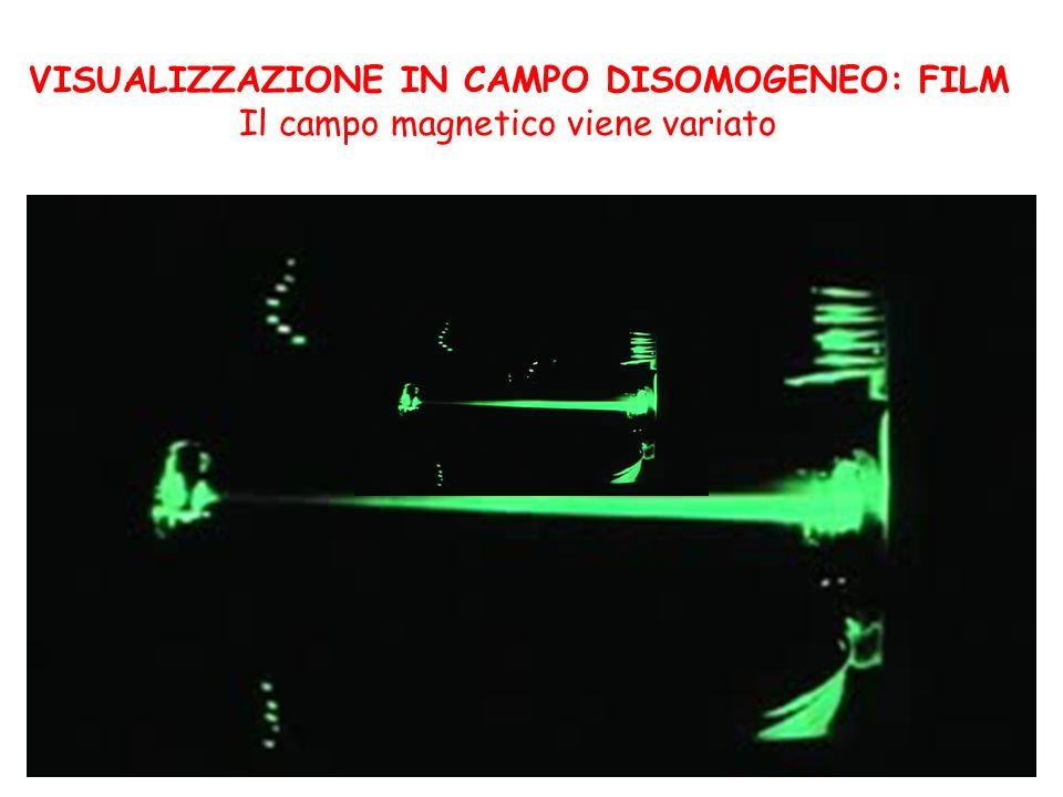 VISUALIZZAZIONE IN CAMPO DISOMOGENEO: FILM