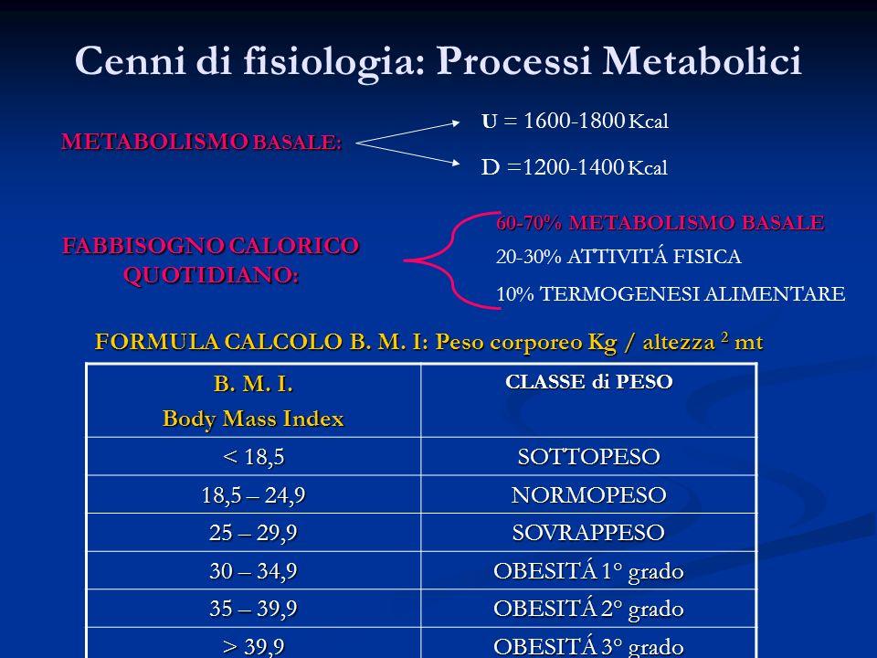 Cenni di fisiologia: Processi Metabolici