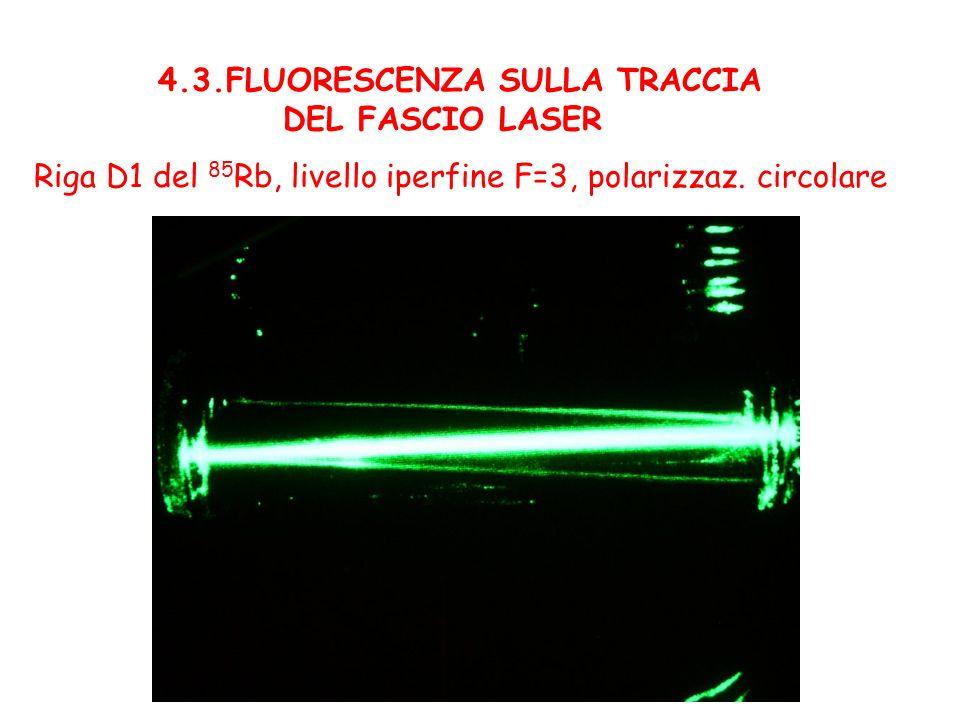 4.3.FLUORESCENZA SULLA TRACCIA