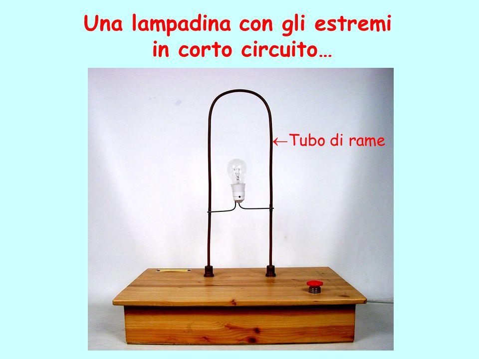 Una lampadina con gli estremi