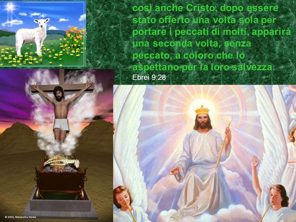 così anche Cristo, dopo essere stato offerto una volta sola per portare i peccati di molti, apparirà una seconda volta, senza peccato, a coloro che lo aspettano per la loro salvezza.