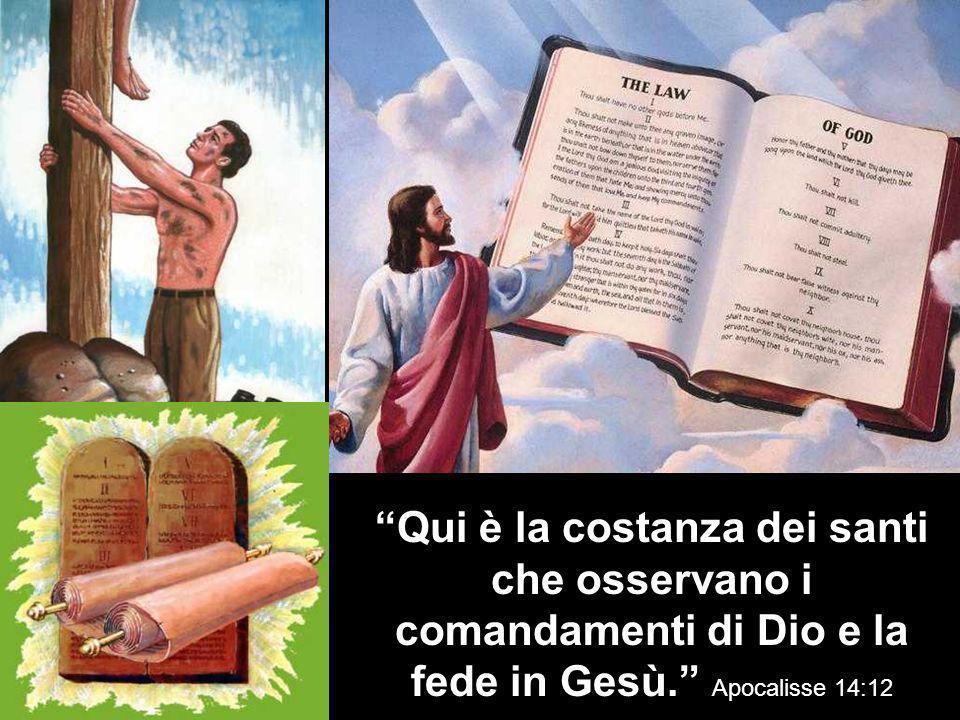 Qui è la costanza dei santi che osservano i comandamenti di Dio e la fede in Gesù. Apocalisse 14:12