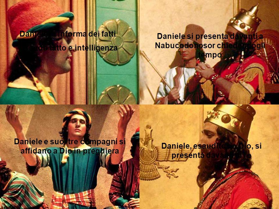 Daniele si informa dei fatti usando tatto e intelligenza