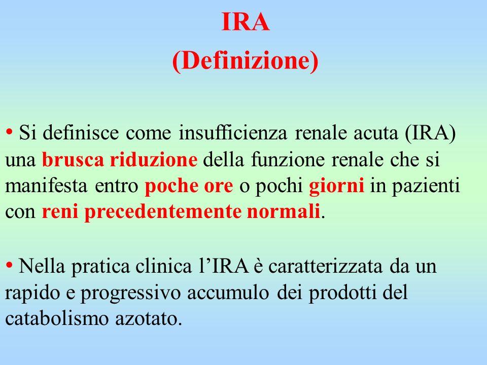 IRA (Definizione)