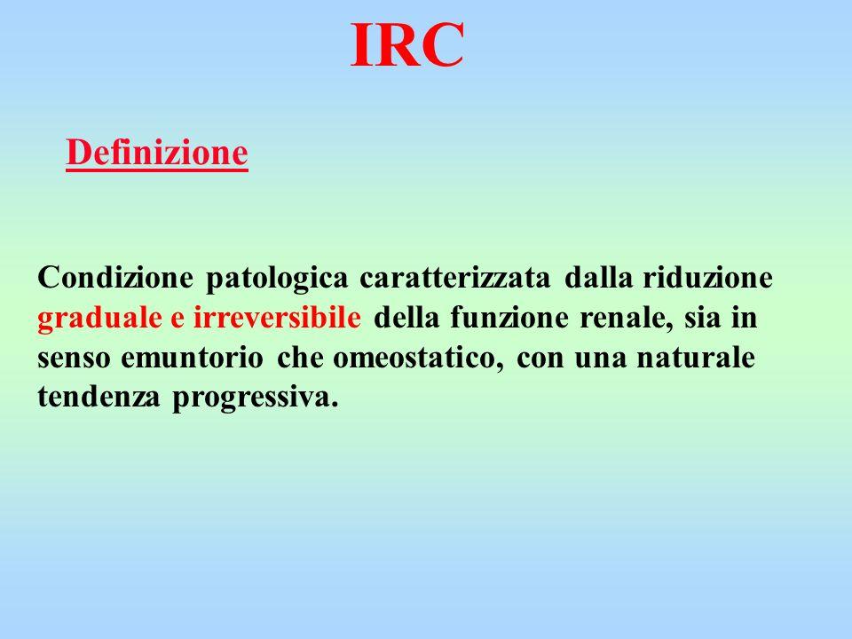 IRC Definizione.