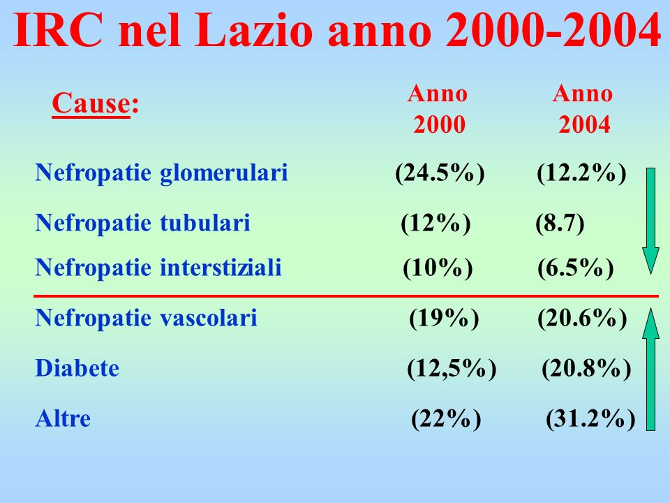 IRC nel Lazio anno 2000-2004 Cause: Anno 2000 Anno 2004
