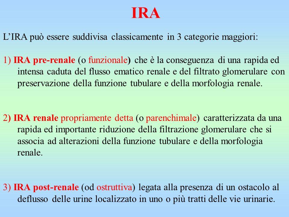 IRA L'IRA può essere suddivisa classicamente in 3 categorie maggiori: