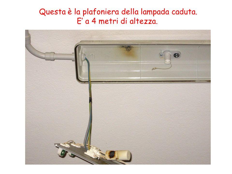 Questa è la plafoniera della lampada caduta.
