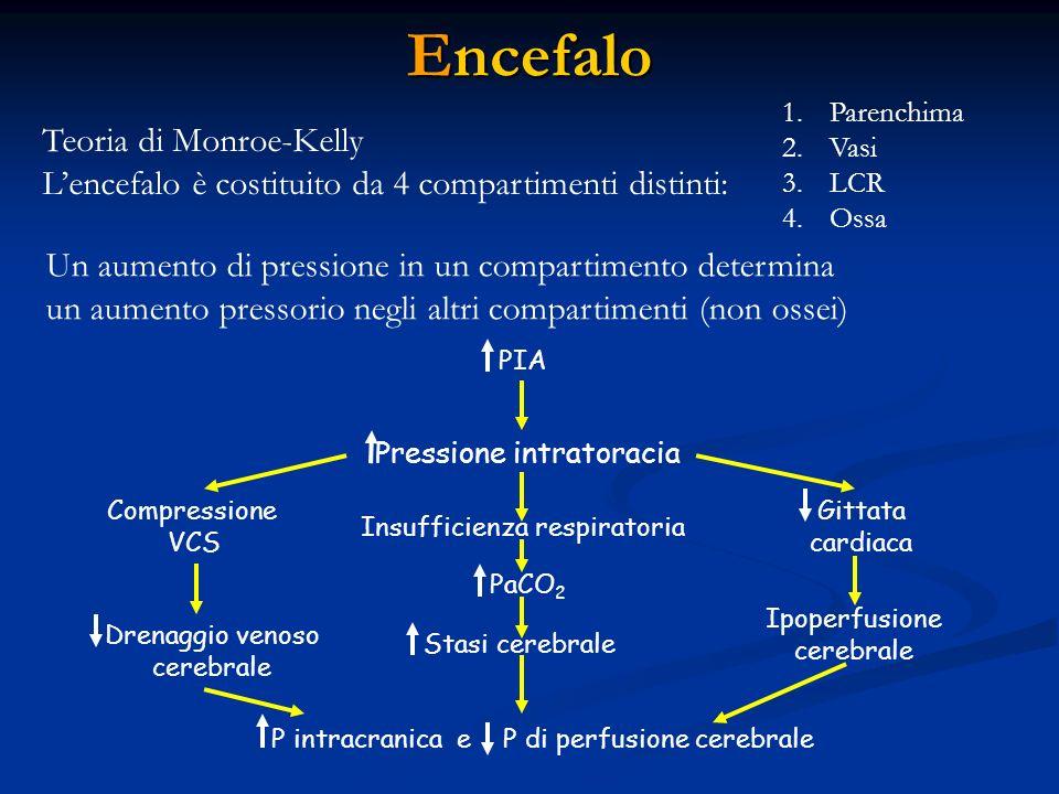 Encefalo Teoria di Monroe-Kelly