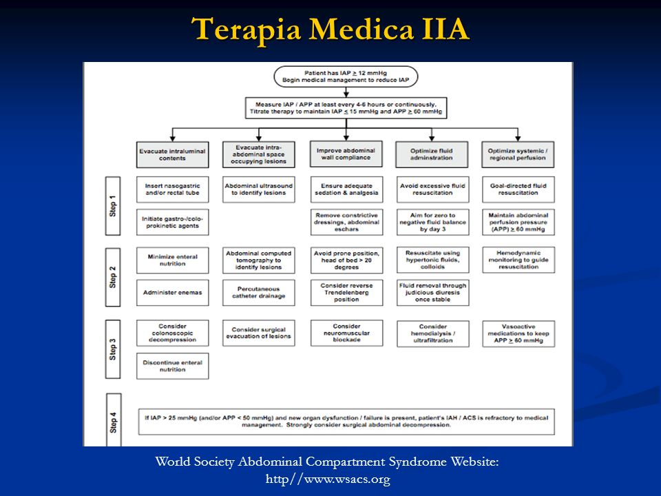 Terapia Medica IIA World Society Abdominal Compartment Syndrome Website: http//www.wsacs.org
