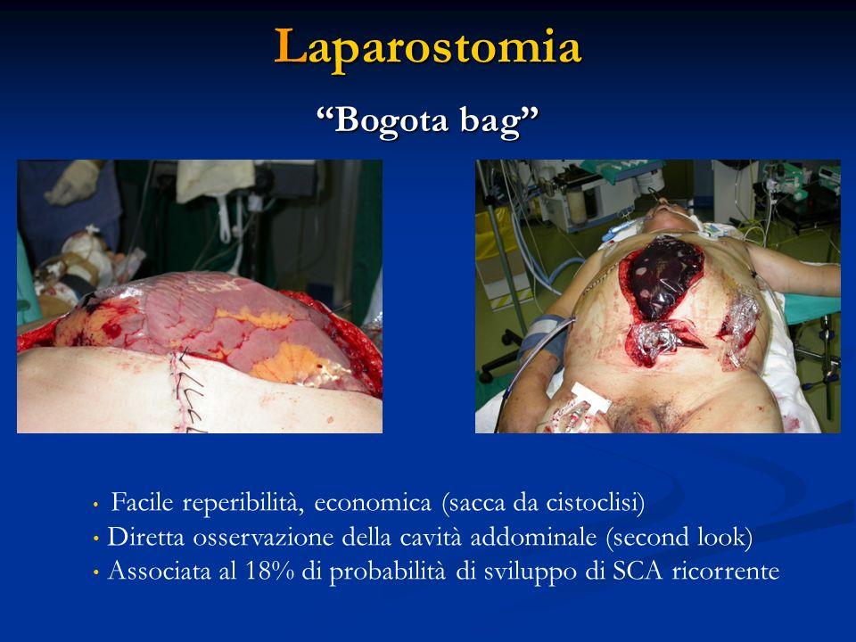 Laparostomia Bogota bag