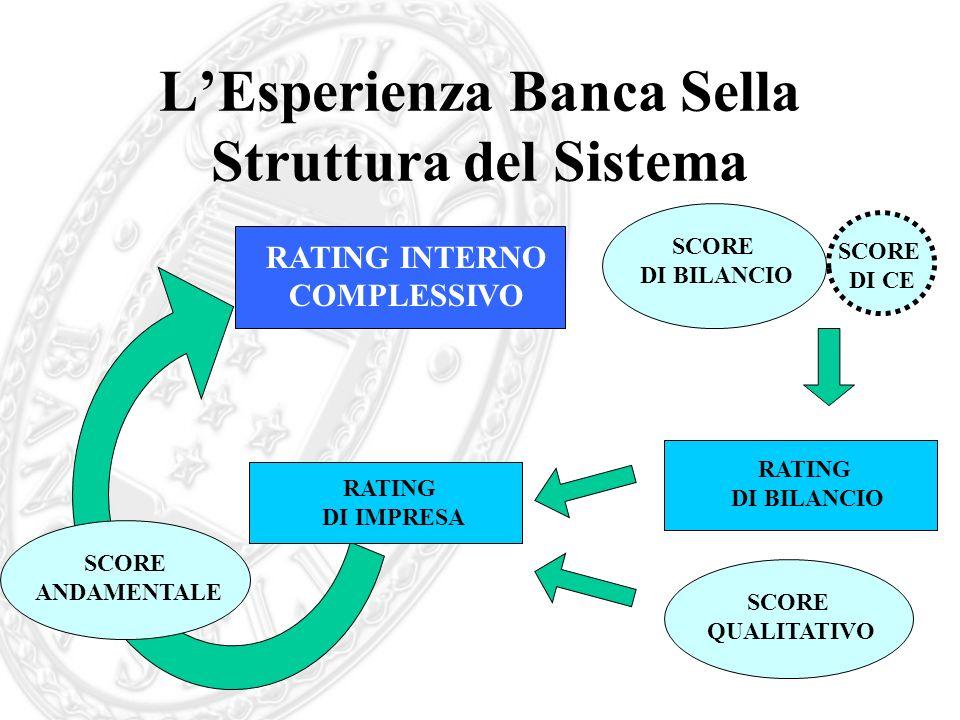 L'Esperienza Banca Sella Struttura del Sistema