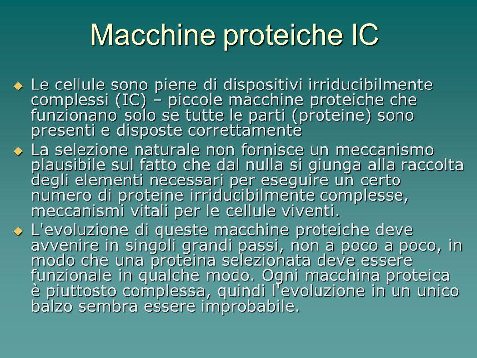 Macchine proteiche IC