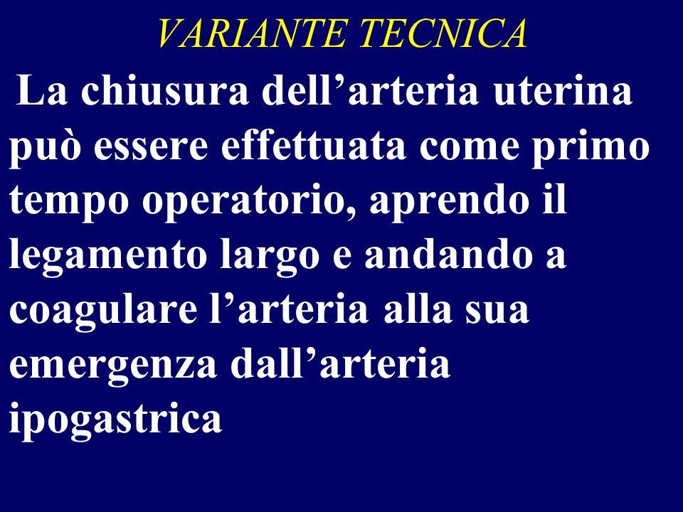 VARIANTE TECNICA