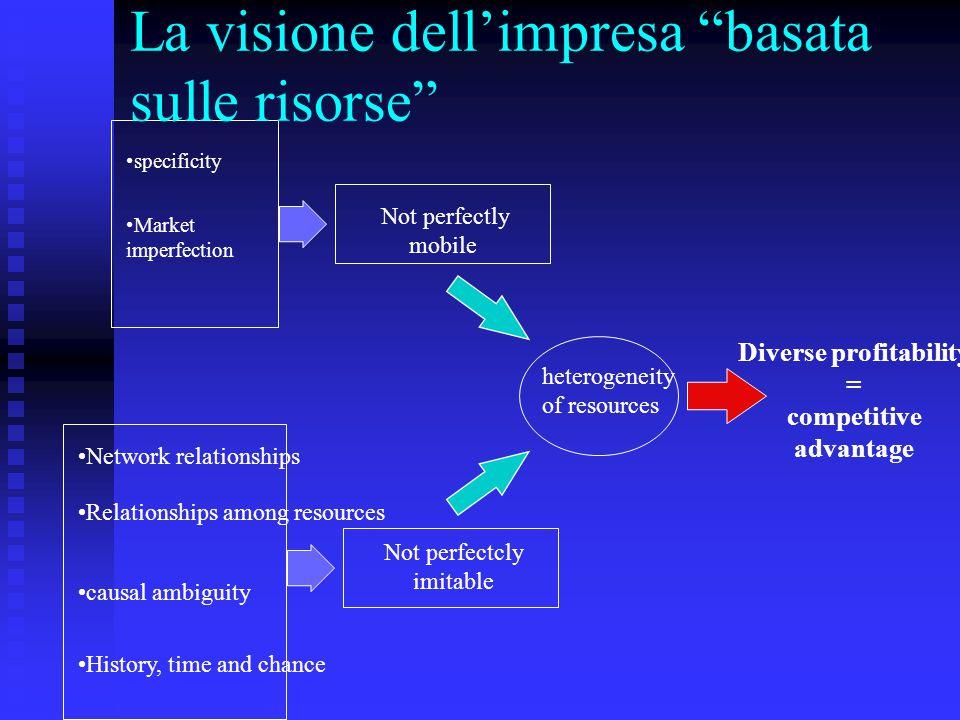 La visione dell'impresa basata sulle risorse