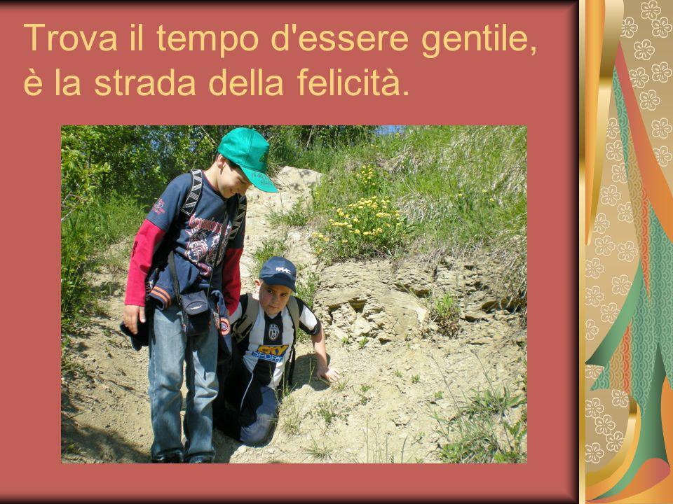 Trova il tempo d essere gentile, è la strada della felicità.