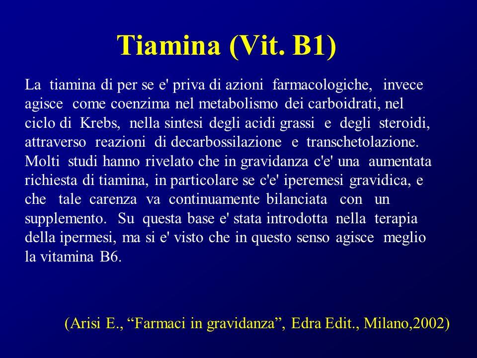 Tiamina (Vit. B1)