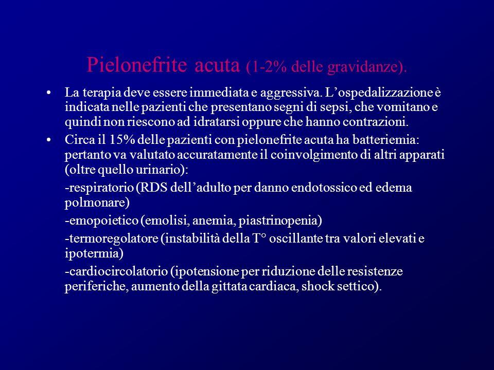 Pielonefrite acuta (1-2% delle gravidanze).