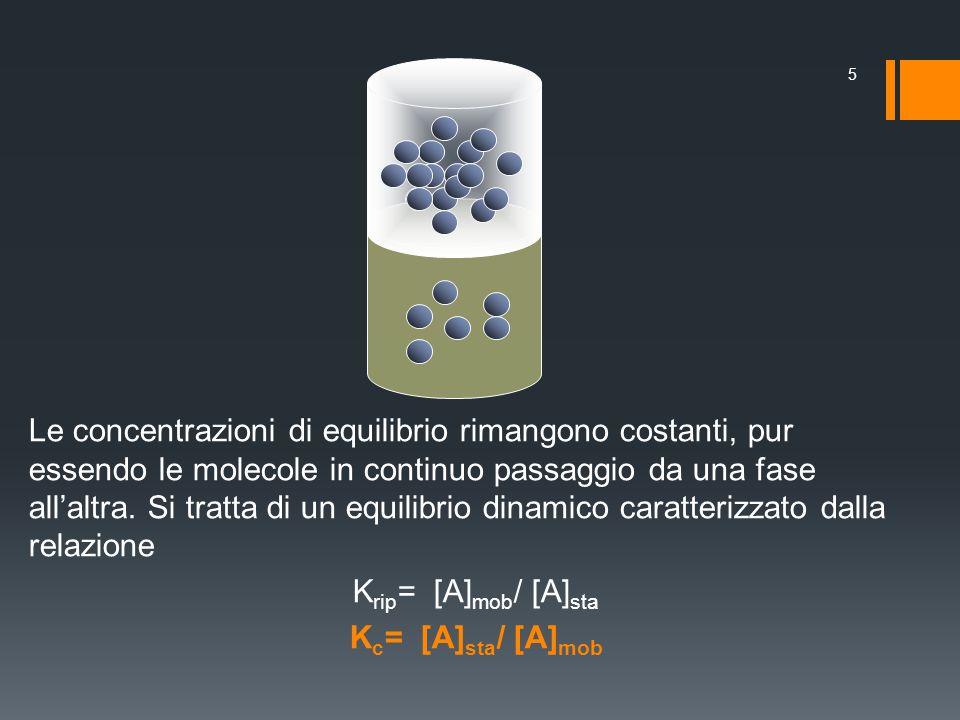 Le concentrazioni di equilibrio rimangono costanti, pur essendo le molecole in continuo passaggio da una fase all'altra.