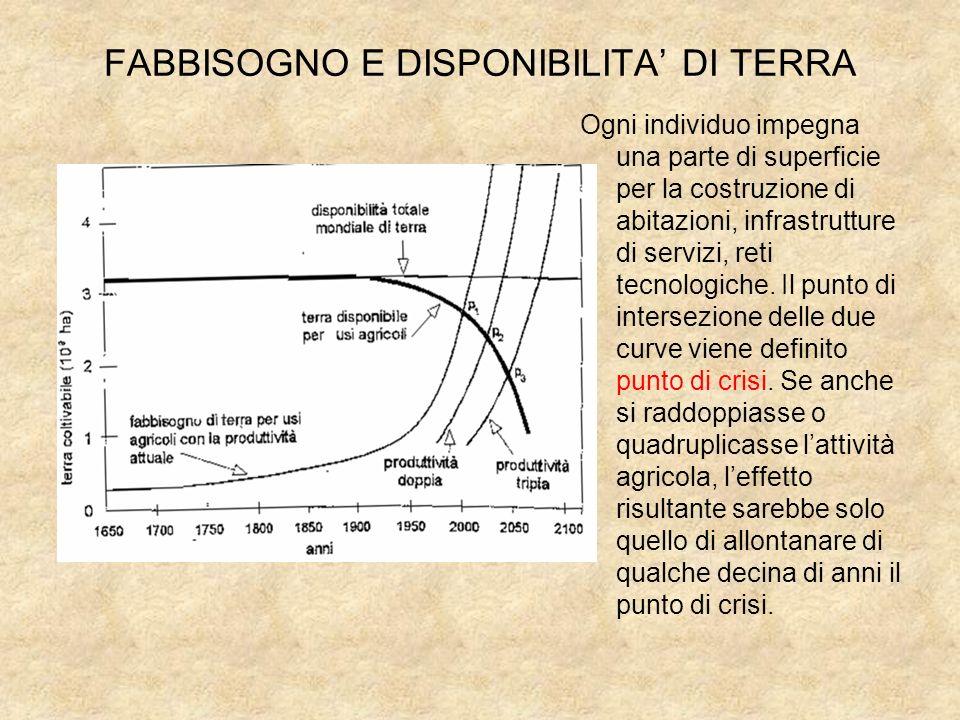 FABBISOGNO E DISPONIBILITA' DI TERRA