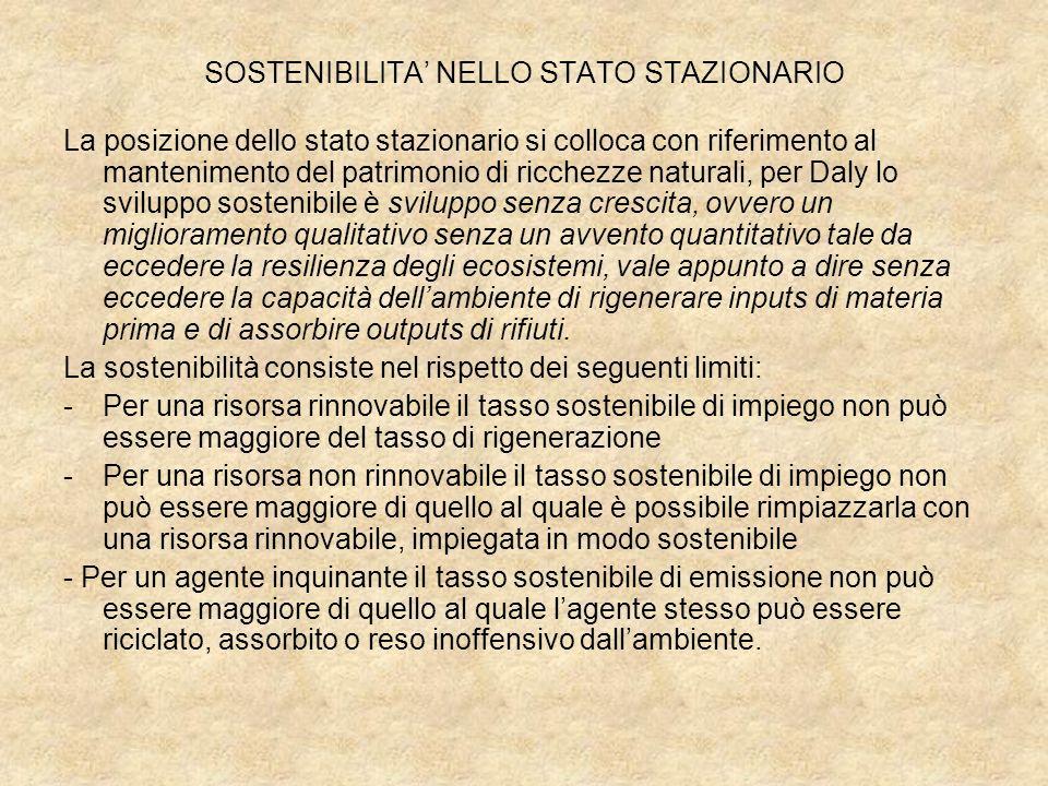 SOSTENIBILITA' NELLO STATO STAZIONARIO