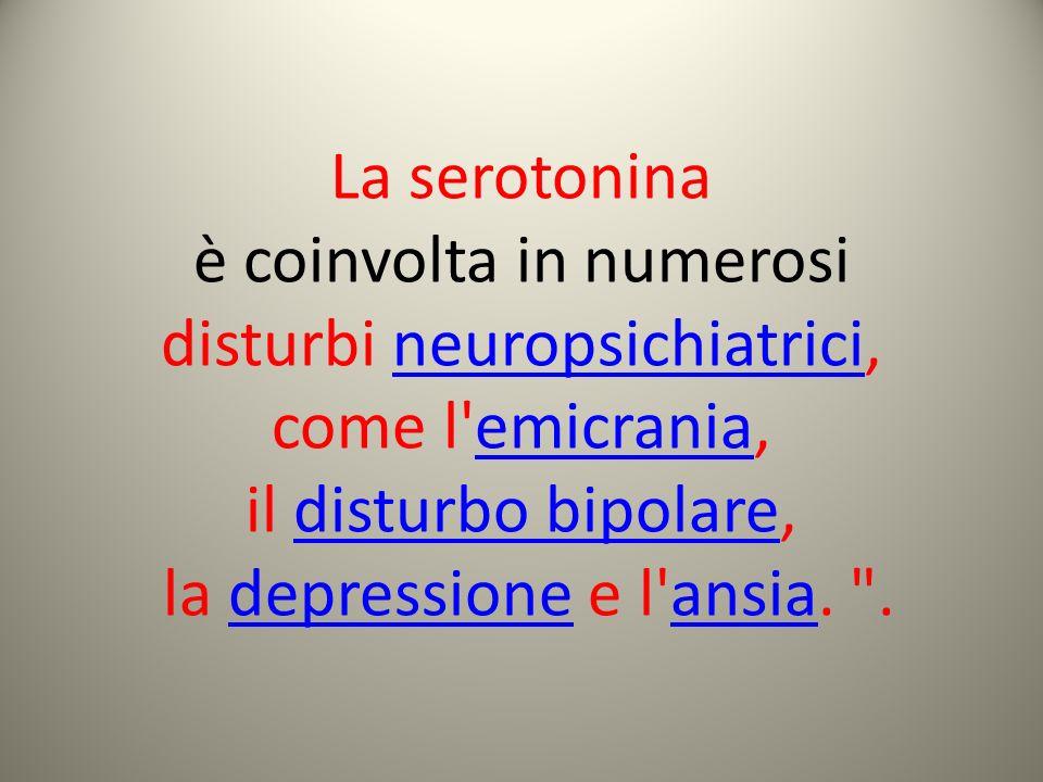 è coinvolta in numerosi disturbi neuropsichiatrici, come l emicrania,
